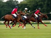 Championship final in Argentina polo